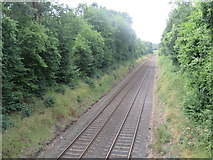 TQ1148 : North Downs Line, near Dorking by Malc McDonald