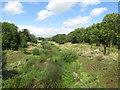TQ4191 : River Roding at Woodford Bridge by Malc McDonald