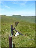 SJ0933 : A new fence on Foel Wen by Richard Law