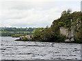 V9389 : Cormorants on O'Donoghue's Prison by David Dixon
