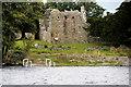 V9389 : Innisfallen Monastery by David Dixon