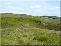 SJ0936 : Moorland and a faint path at Careg-y-Caws by Richard Law