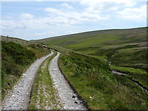 SJ1136 : Track beside the Nant Rhydwilym by Richard Law