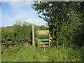 TL5405 : Footpath and stile near Ongar by Malc McDonald