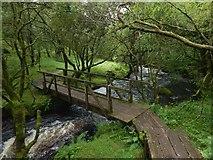 NS2371 : Footbridge in Shielhill Glen by Lairich Rig