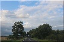 SK9755 : Cliff Road between Welbourne and Wellingore by David Howard