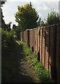 SU8345 : Footpath to Middle Bourne by Derek Harper