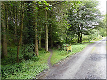 SN7673 : Footpath diverging from an estate road on the Hafod estate by John Lucas