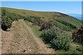 SX5546 : South West Coast Path through Netton Down by Hugh Venables