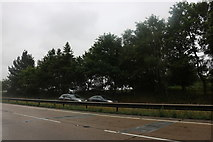 TL9961 : The A14 near Borley Green by David Howard