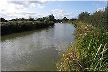 SP9122 : Grand Union Canal near Grove by Philip Jeffrey