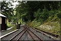 SN6878 : Vale of Rheidol Railway by Peter Trimming
