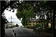 SZ5881 : Shanklin: Chine Avenue by Michael Garlick