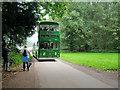 SD3527 : On the Lytham Hall Driveway by David Dixon