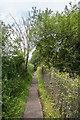 TQ1556 : Footpath by Ian Capper