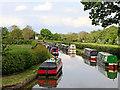SK1409 : Wyrley and Essington Canal remnant near Huddlesford, Staffordshire by Roger  Kidd