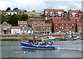 NZ8910 : Tina Dawn on the River Esk, Whitby by Mat Fascione