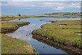NU1335 : Saltmarsh by Ian Capper