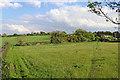 SK1409 : Farmland north-west of Whittington in Staffordshire by Roger  Kidd
