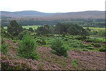 NH8521 : Moorland near Inverlaidnan by Anne Burgess