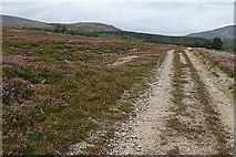 NH8421 : Estate Road by Anne Burgess