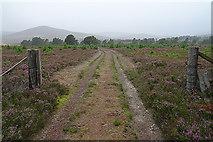 NH8420 : Moorland Track by Anne Burgess