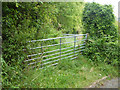SZ5479 : Gates on old track into woodland, Stenbury Down by Robin Webster