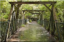 TQ3472 : Sydenham : Cox's Walk Footbridge by Julian Osley
