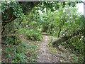 SZ5379 : Bridleway down from Appuldurcombe Down by Robin Webster