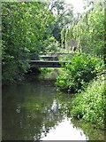 TQ0493 : The River Colne downstream of Drayton Ford Bridge by Mike Quinn