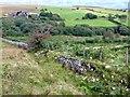 SN6709 : Henrhyd Farm by Alan Hughes