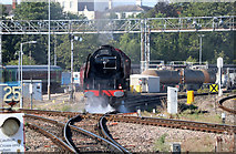 SO8555 : A Duchess at Worcester Shrub Hill Station by Chris Allen