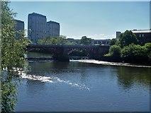 NS5964 : Glasgow bridges [10] by Michael Dibb