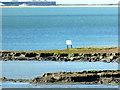 SZ3493 : Mudbanks in the Lymington River estuary by John Lucas