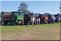 SJ4313 : Shrewsbury Steam Rally - a row of steam wagons by Chris Allen