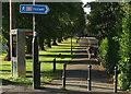 ST5874 : Lovers' Walk, Redland by Derek Harper