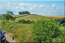 SX8460 : Berry Pomeroy : Countryside Scenery by Lewis Clarke
