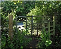 NS5061 : Gate leading to Hawkhead Woodland by Lairich Rig