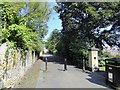 NZ2364 : Back lane in Summerhill, Newcastle by Robert Graham