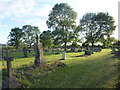 SK7695 : Evening light in Misterton New Cemetery by Marathon