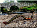 H4772 : Stick resting on a raised gravel bed, Camowen River by Kenneth  Allen