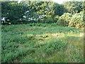 TG0642 : Saucer barrow on Salthouse Heath by Richard Law