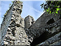 S6965 : Ruined Castle by kevin higgins