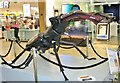 TG2208 : Big Bugs on tour - stag beetle by Evelyn Simak