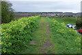 SY9187 : Town walls, Wareham by Derek Harper