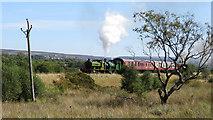 SO2309 : Pontypool & Blaenavon Railway by Gareth James