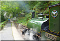 SH6806 : Sir Haydn at the end of the line by Des Blenkinsopp