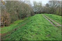 SY9287 : Town walls, Wareham by Derek Harper