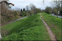 SY9287 : Wareham Town Walls by Derek Harper