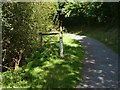 SX9778 : Path by Shutterton Brook (6) with flood depth indicator by David Smith